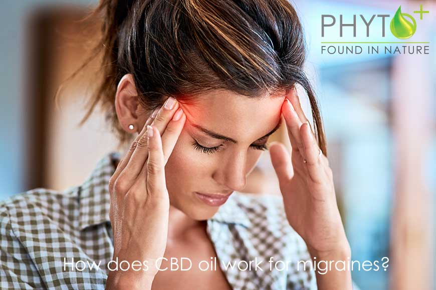 How does CBD oil work for migraines?