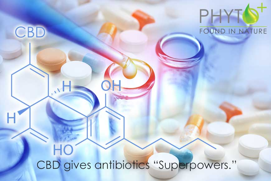 "CBD gives antibiotics ""Superpowers."""