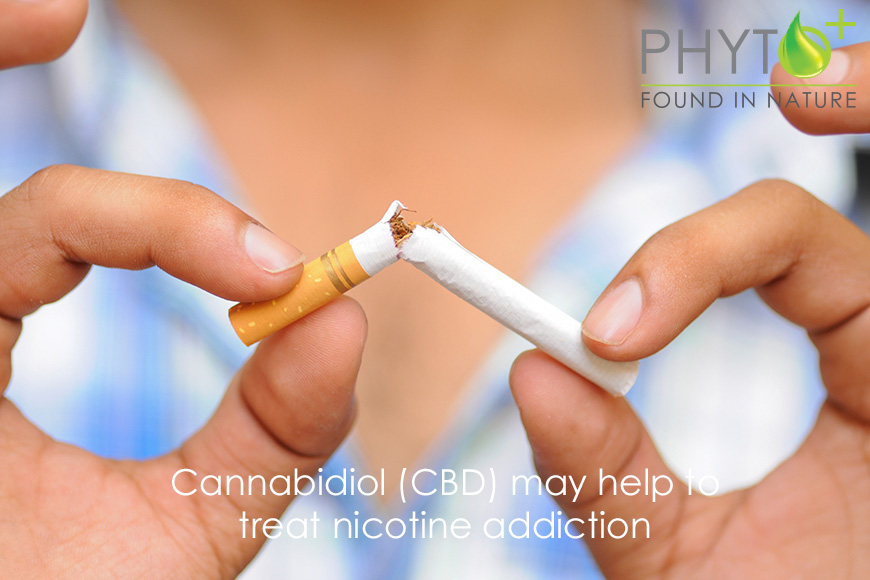 Cannabidiol (CBD) May Help to Treat Nicotine Addiction