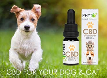 CBD Drops for Pets